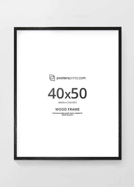 BLACK PICTURE FRAME, 40x50 (16x20) – Postersprints