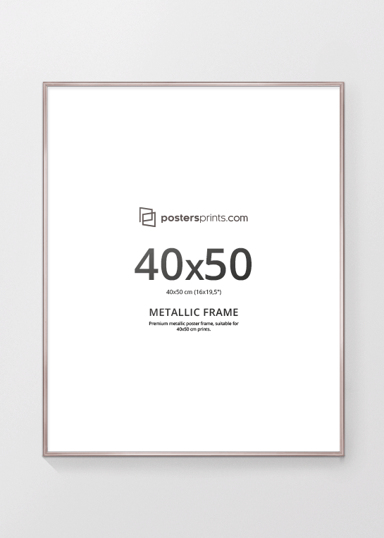 PICTURE FRAME CHAMPAGNE, 40x50 (16x20) – Postersprints