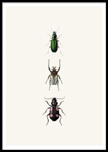 VINTAGE BUGS NO. 1 POSTER