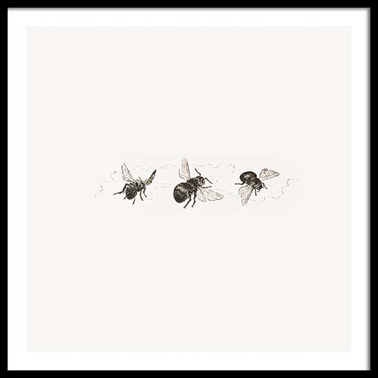 BUZZING BEES POSTER