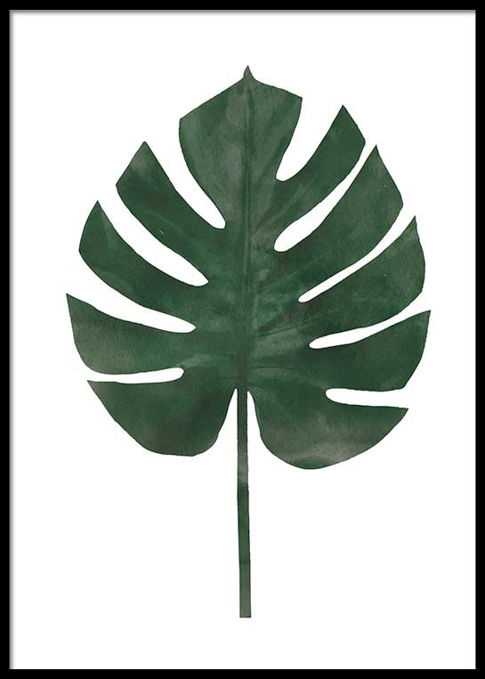 MONSTERA WATER COLOR POSTER