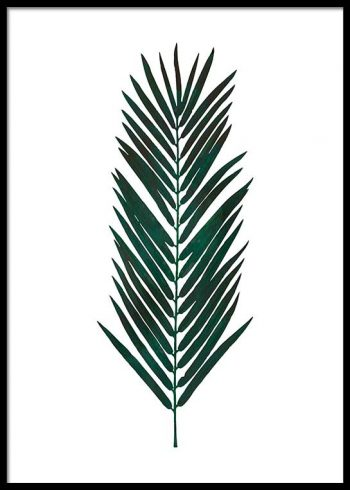 PALM LEAF WATER COLOR POSTER