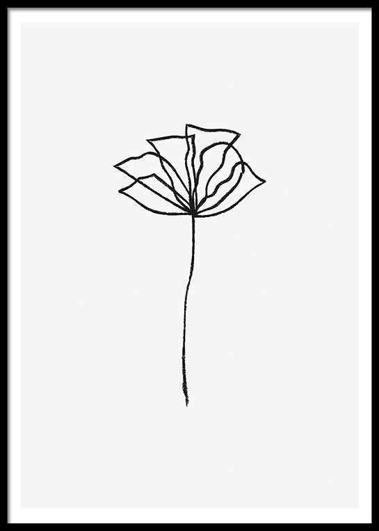 FLOWER LINES POSTER